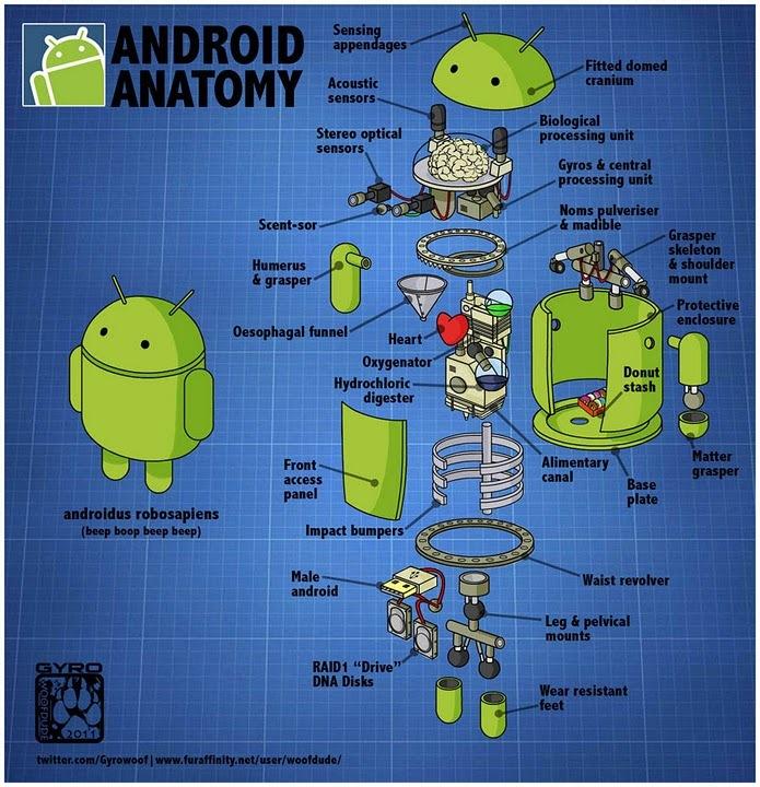 humor] La anatomía de un Android | Un Poco Geek